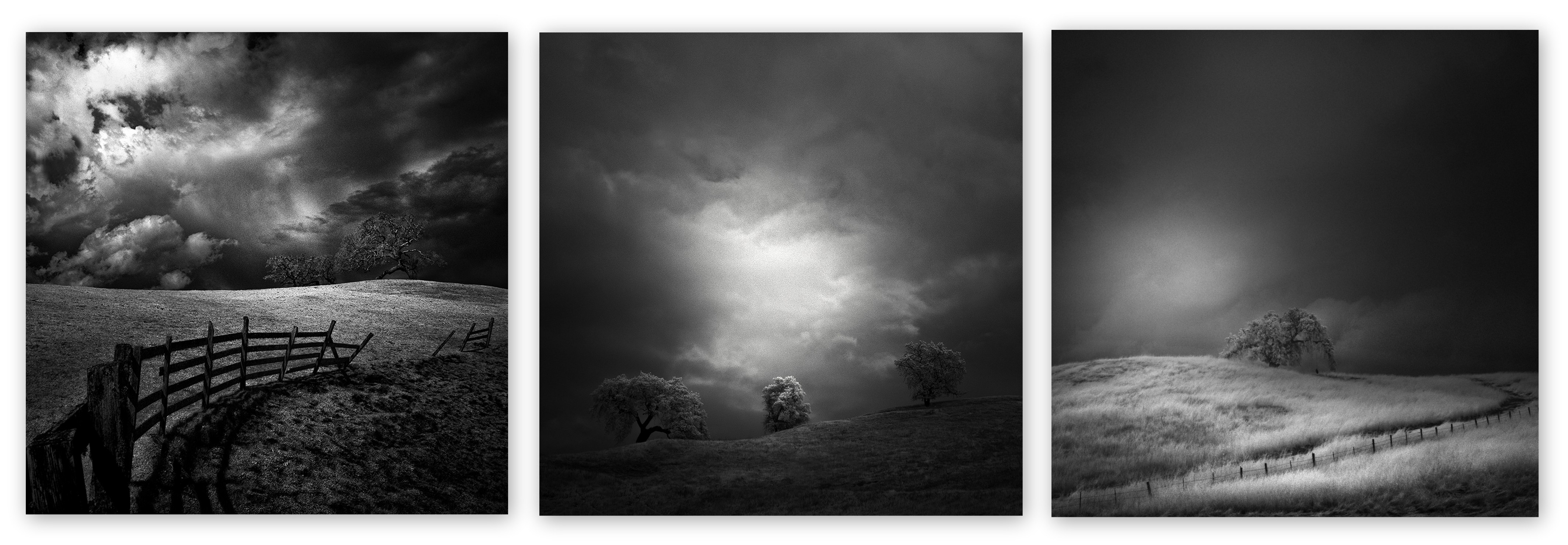 Nathan Wirth - Collage II