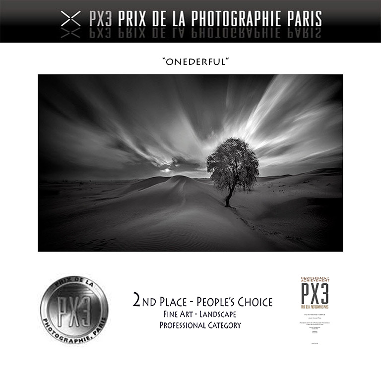People's-Choice-Awards---PX3-2015---2nd-Place---Silver---FineArt-LandscapePro